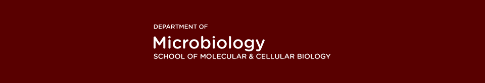 The Department of Cellular and Developmental Biology