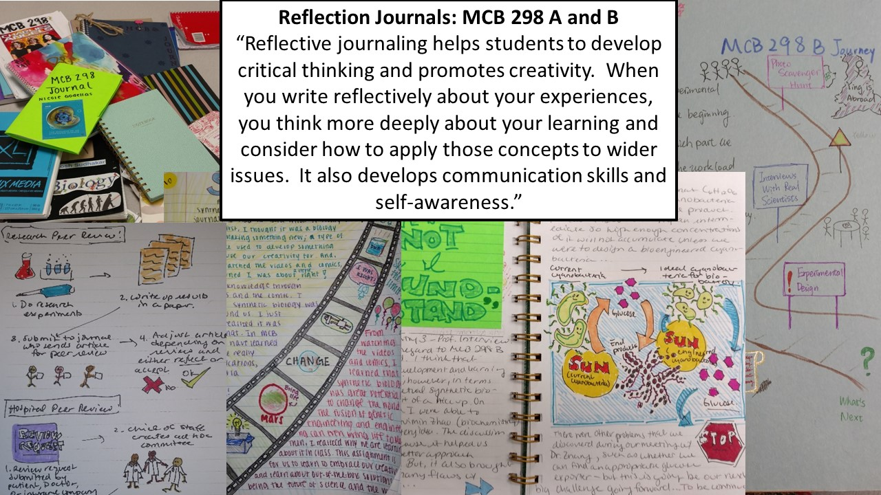 example journals spread out on table with a text-box saying: Reflection Journals, MCB 298 A and B 'Reflective journaling helps students to develop critical thinking and promotes creativity.  When you write reflexively about your experiences, you thin more deeply about your learning and consider how to apply those concepts to wider issues. It also develops communication skills and self-awareness.'